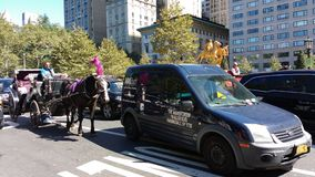 在交通,中央公园, NYC, NY,美国中的马和支架乘驾 免版税库存图片