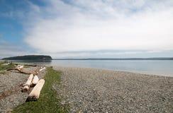 在亮光Tidelands Bywater海湾的国家公园岸的漂流木头在口岸Ludlow附近在皮吉特湾在华盛顿州 库存图片