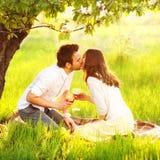 在亲吻本质上的爱的夫妇 库存照片