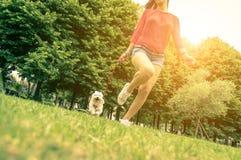 在人和狗之间的爱 免版税图库摄影