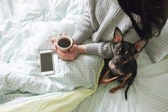 在人和狗之间的友谊 免版税库存图片