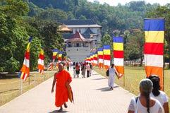 在人寺庙附近的修士 库存图片
