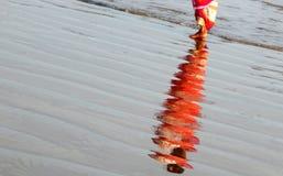 在人海浪潮的反射海滩的 免版税库存照片