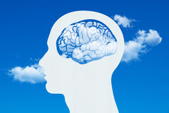 在人头的脑子 库存图片