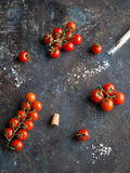 在从一个玻璃管和大海盐的红色成熟西红柿洒的分支 免版税库存照片