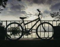 在他的自行车期间,试图的偷窃在2015年5月19日,分社金子夜被谋杀了 纪念品由munici设定 图库摄影