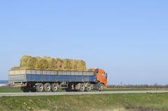 在他的身体的卡车运载的干草 做干草为冬天 免版税库存照片