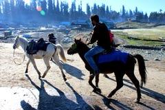 在他的马的牛仔骑马在古尔马尔格,印度 库存照片