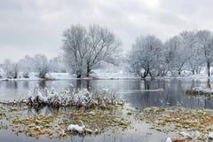 在以后的河岸降雪在一个多云冬日 33c 1月横向俄国温度ural冬天 库存图片
