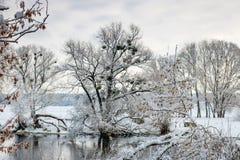 在以后的河岸降雪在一个多云冬日 33c 1月横向俄国温度ural冬天 免版税库存图片