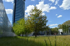 在企业大厦旁边的公园 库存图片