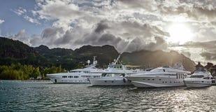 在伊甸园海岛停泊处的一些条豪华游艇  库存照片