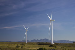 在伊莉莎白港附近的风力场 库存图片