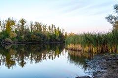 在伏尔加河的黎明 库存图片
