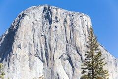 在优胜美地国家公园的El Capitan在夏天 库存图片