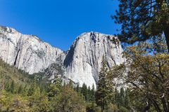 在优胜美地国家公园的El Capitan在夏天 库存照片