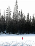 在优胜美地的冬天 库存图片