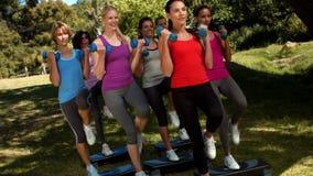 在优质格式健身小组举的手重量在公园 影视素材