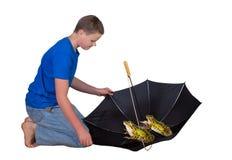 在伞的二只青蛙 库存图片