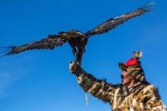 在传统衣物的老鹰猎人,当寻找对拿着一只鹫,在山西蒙古时的野兔 免版税库存图片