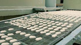 在传送带的新鲜的糖果 糖果工厂 影视素材