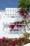 在传统希腊样式的大厦 免版税库存图片