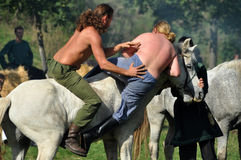 在传统服装的骑马示范 图库摄影