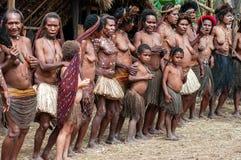 在传统衣裳的Papuan部落 免版税库存图片