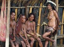 在传统衣裳的Papuan部落 免版税库存照片