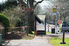 在伦敦duri的树毁坏的公车候车厅 免版税库存照片