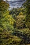 在伯勒屯修道院附近的河strid在约克夏,英国 免版税库存图片
