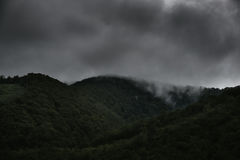 在低云彩的树木丛生的山坡与在一个风景风景视图的薄雾覆盖的常青针叶树 库存照片