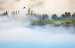 在低云彩的树木丛生的山坡与常青树co 免版税库存照片