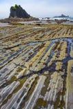 在低潮期间的海滩 库存照片