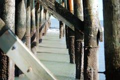 在低潮期间的码头下在棕榈小岛在查尔斯顿, SC 库存照片