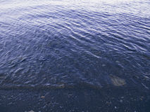 在低潮照片的起波纹的海水 仍然与波纹的海表面在水 库存图片