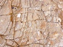 在低点的层状岩石步 库存照片