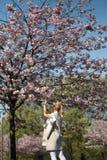 在佐仓樱花公园在春天享受自然和时间的美丽的白肤金发的年轻女人在她期间旅行 库存照片