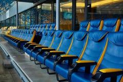 在体育体育场的蓝色椅子 库存照片