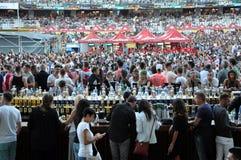 在体育场内拥挤在一个生活音乐会 库存图片