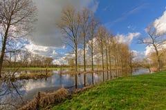 在佛兰芒农田风景的水池 免版税库存照片