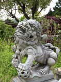 在佛教寺庙的前门的防护石中国狮子 免版税库存图片