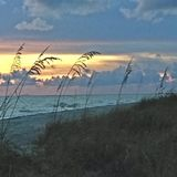 在佛罗里达墨西哥湾海岸的日落  免版税库存照片