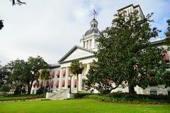 在佛罗里达状态国会大厦前面的大树 免版税库存照片