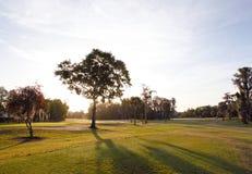 在佛罗里达高尔夫球场的日出 库存照片