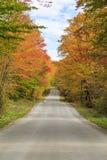 在佛蒙特的后面路的秋叶 库存图片