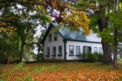 在佛蒙特,美国的秋叶 免版税库存图片