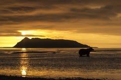 在你好海湾的日出 免版税库存照片