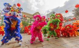 在使人开眼界的仪式, Thien Hau夫人塔,越南的南狮舞蹈 免版税图库摄影
