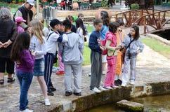 在使用在游乐园的七或八岁的孩子 库存照片